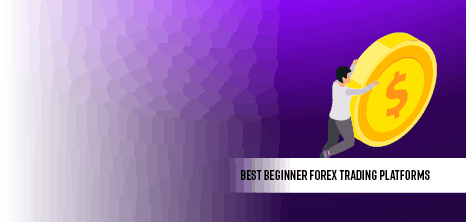 best forex trading platform for beginners